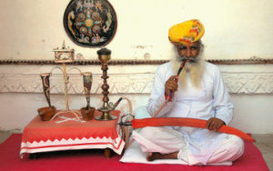 Inde du Nord Maharajas