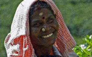 femme dans une plantation en Inde