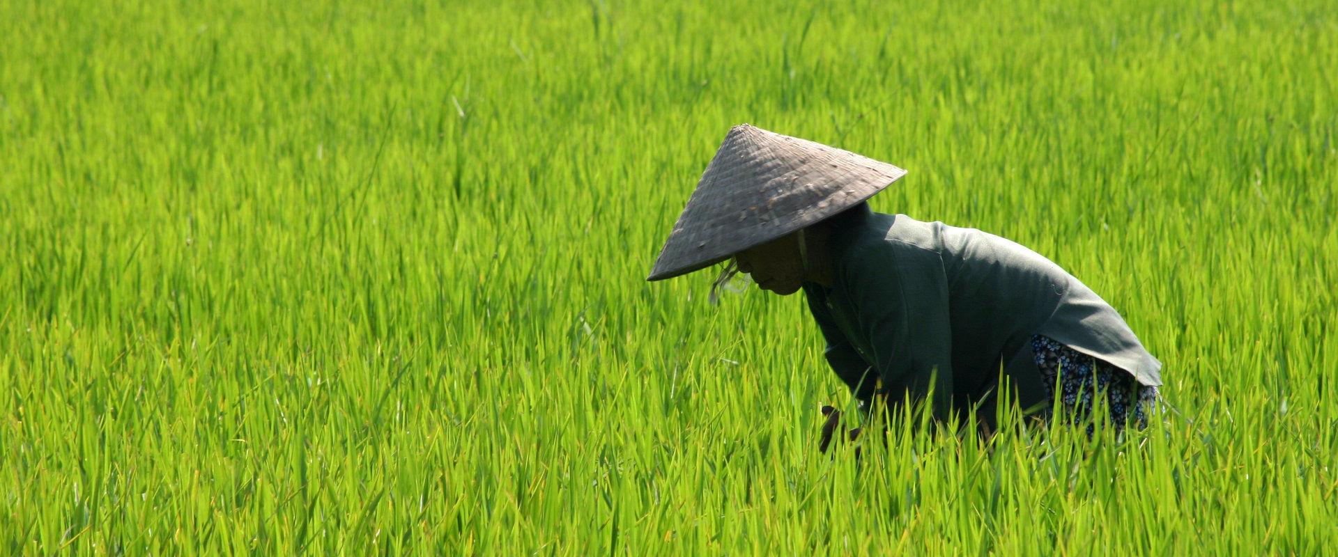 meilleurs sites de rencontres Vietnam
