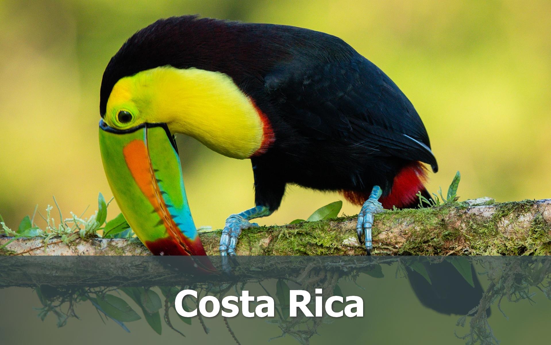 Voyage au Costa Rica sur-mesure