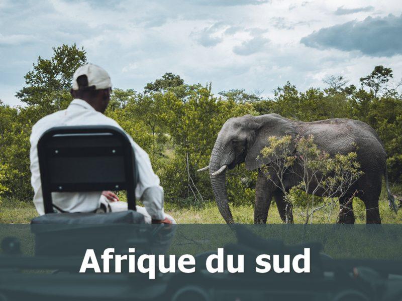 Voyage en Adrique du sud sur-mesure safari