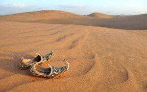 Desert de Dubaï