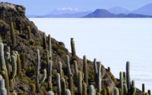 Desert Uyuni en Bolivie