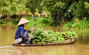 Marche flottant Mekong au Vietnam