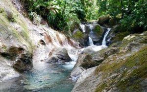 Nature de Guadeloupe