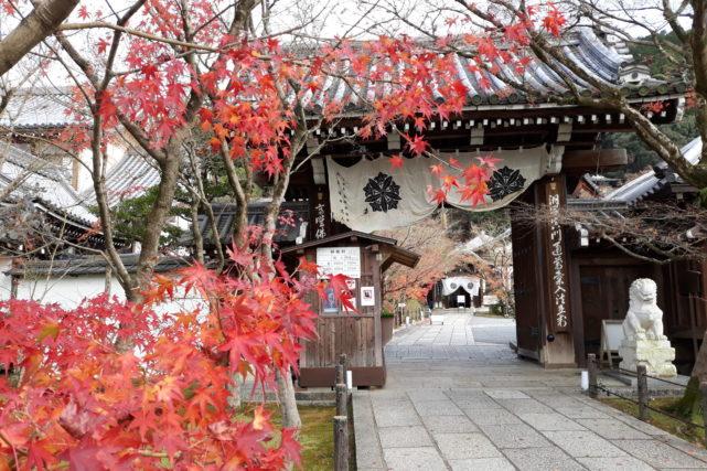 voyage au Japon à l'automne