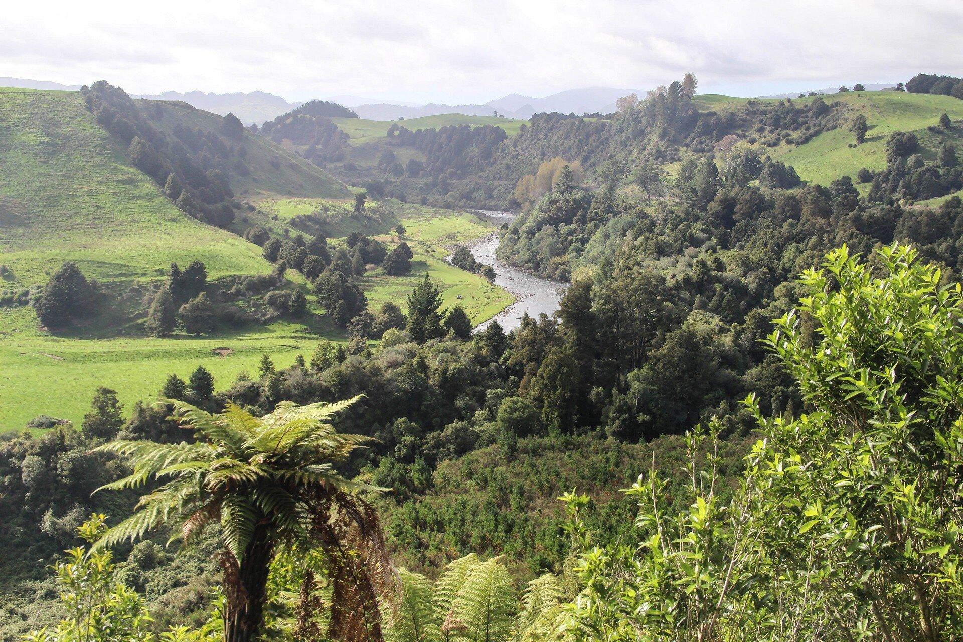 nouvelle-zélande road-trip autotour